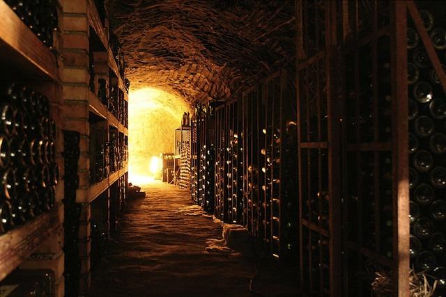Moravian Wine Cellar