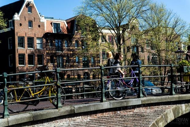 bike locks in amsterdam