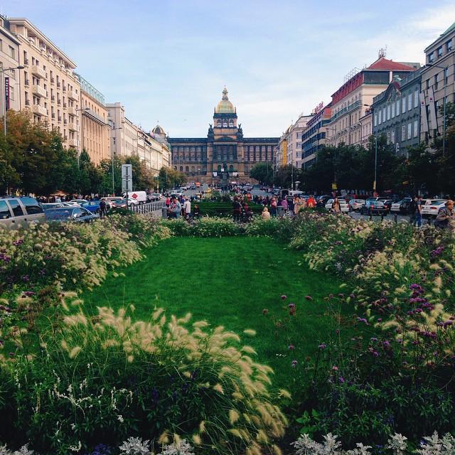 pluhovsky Prague Instagram