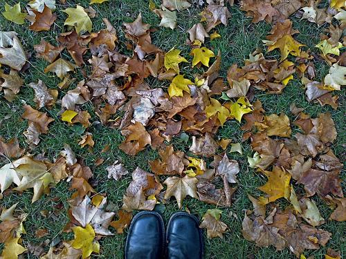 Autumn London