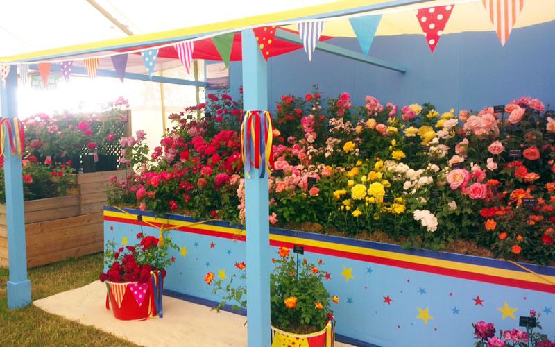 Chelsea Flower Show - London