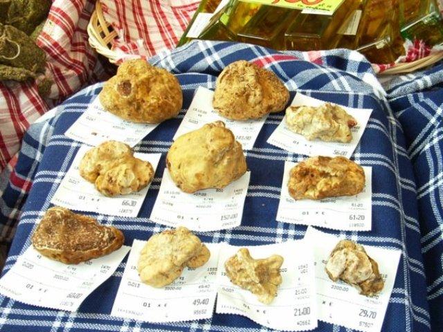 alba truffle fair (1)