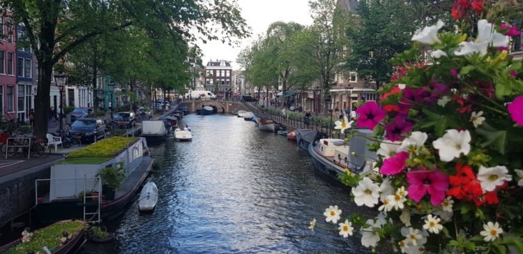 3 Myths About Cannabis Cafes in  Amsterdam
