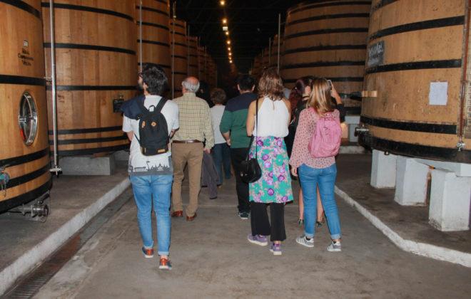 World's Oldest Port Wine Cave & Food Tour
